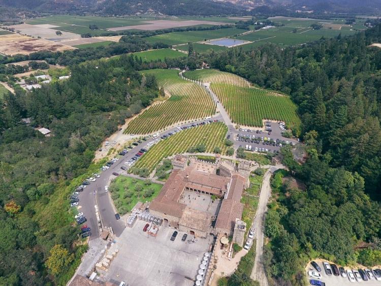 Domaine Carneros Napa Winery (30 of 31)